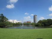 【多摩中央公園】大きな池と広い芝生があるのが特徴の緑豊かな公園は朝のウォーキングにピッタリ!