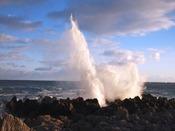 三陸復興国立公園(岩井崎):岩井崎は三陸復興国立公園の最南端にあります。波が打ち寄せるたびに潮が吹きあがる潮吹岩は自然の雄大さを感じられます。