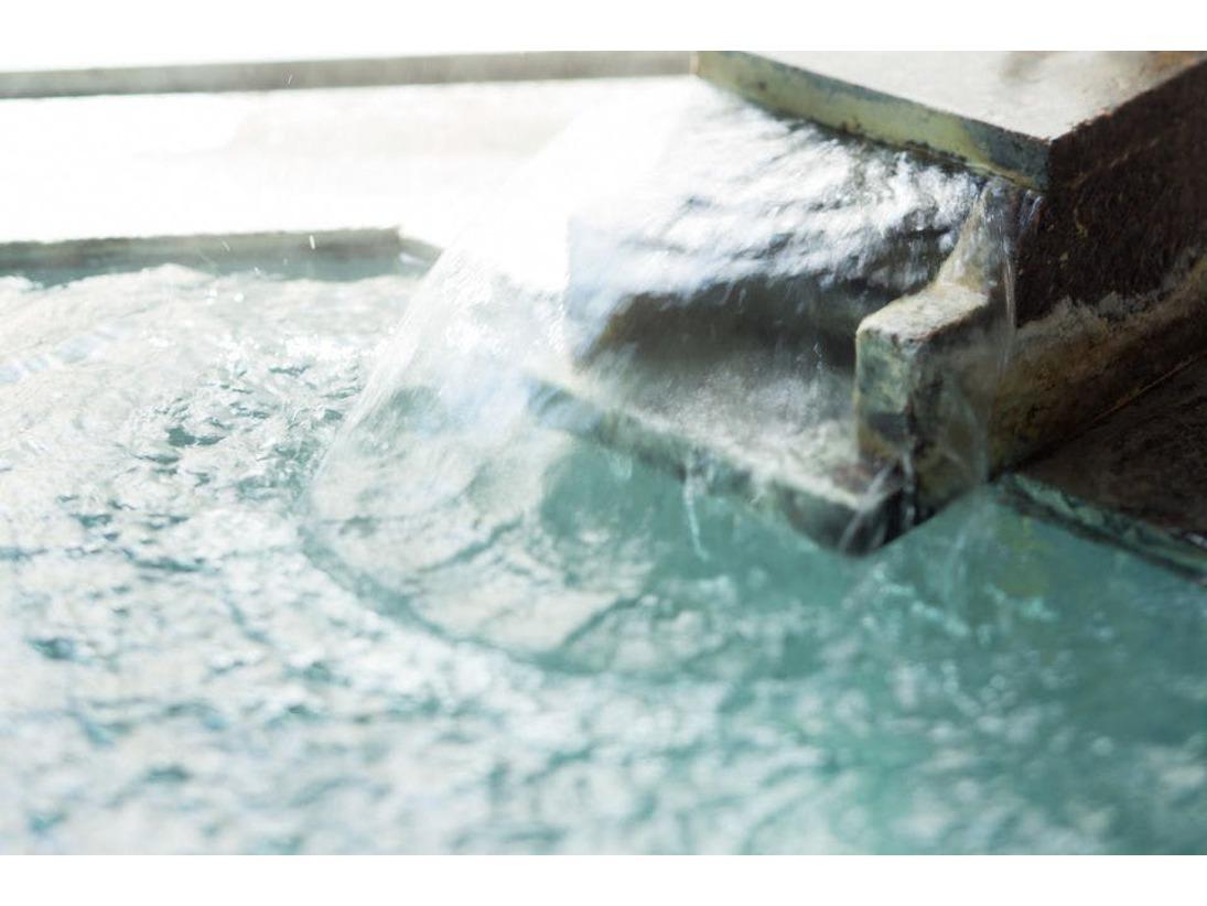 元箱根温泉でワンちゃんと一緒に身も心もリフレッシュ