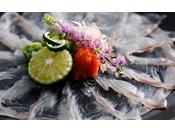 真鯛はその身を鮮やかに輝かせる事から春は「桜鯛」、秋は「紅葉鯛」と呼ばれます≪料理イメージ≫