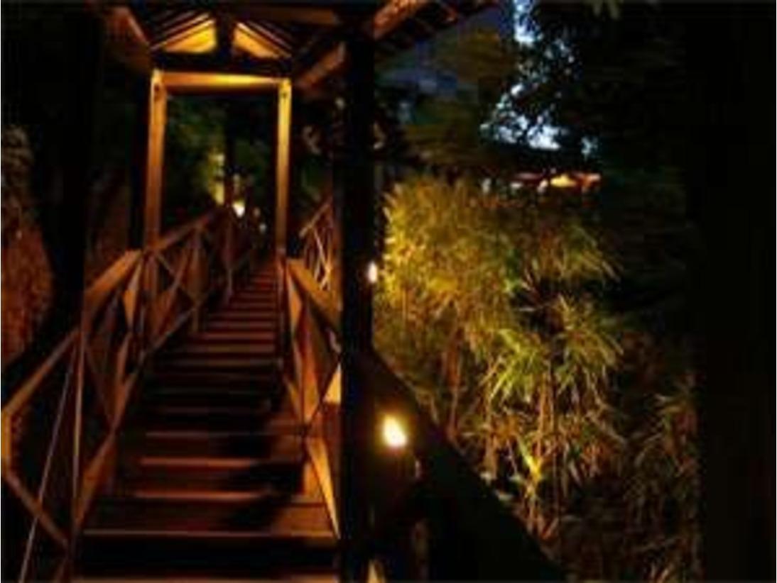 「森の露天風呂」の幻想的な回廊