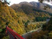 【見ごろは10月中旬~11月中旬】富山県でも有数な紅葉スポット黒部峡谷で大自然を満喫 秋の温泉旅行