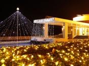 クリスマスシーズンはエントランスやロビーもイルミネーションに彩られます。