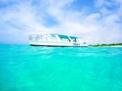 【グラスボート】色とりどりの珊瑚やお魚たちが泳ぐ海の中はまるで別世界。普段は覗くことの出来ない神秘的な海の世界を、気軽にお楽しみください♪