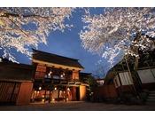 長屋門 桜