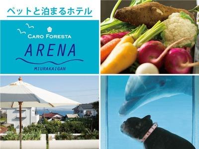 ペットと泊まる宿 CARO FORESTA 三浦海岸ARENA