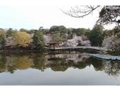 桜の時期の浮見堂