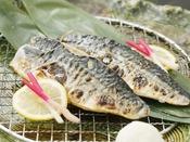 【金澤じわもん料理】鯖いしる焼き