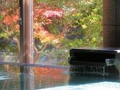 湯船に映える鮮やかな紅葉。少し早めに到着して、手足を伸ばしてゆったりと、温泉を愉しみませんか?(画像;せせらぎの湯/1階大浴場)