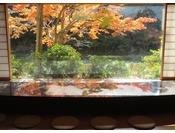 当館をゆったり散策されて、お気に入りの紅葉スポットを見つけてくださいませ