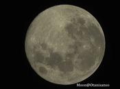 私たちの地球にとって唯一の衛生「月」は、地球環境にも密接な関係をもっております。この機会にぜひ「月」の魅力に触れてくださいませ。(画像:大谷山荘の天体ドームで撮影。地球から見える「月の表面」)
