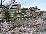 ぽかぽか日よりで桜が続々と花開いております。せせらぎを近くに、桜のアーチの下をぜひご散策くださいませ