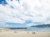 夏はビーチで海水浴