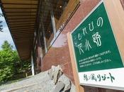 【散策コース】当館に向かって左手に「こもれびの花小路」の入り口がございます。