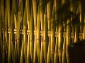 ◆石庭風景◆「南禅寺垣」は限られた職人技