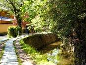 ◆周辺観光◆哲学の道(徒歩8分)