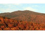【秋】10月~11月にかけて楽しめる裏磐梯の紅葉
