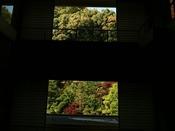 大谷山荘の紅葉は、例年11月下旬~12月上旬頃でございます。
