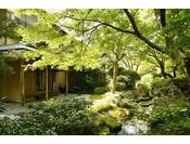 離れ青嵐荘は季節な花々や植物に囲まれた自然豊かな空間。