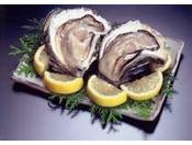 日本海の夏の風物詩「岩牡蠣」
