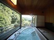 ジャグジー付和室15帖。木々の緑に包まれたジャグジーバス。温泉のお湯ではございませんが、景観に癒される時間をお過ごしいただけます。