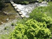 館に面した山々の眺望と川のせせらぎで癒しの時間をお過ごしください。