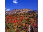 紅葉の早池峰山時期:10月中旬から11月上旬