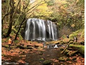【秋】「達沢不動滝」岩肌に沿って水がスダレのように流れ落ちる勇壮男滝と、その西側にひっそりと佇む女滝[ホテルから40分]
