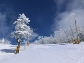 【冬】一面銀世界
