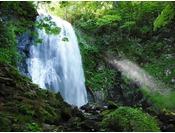 【夏】豪快な水量を誇る小野川不動滝