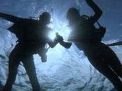 体験ダイビング・ファンダイビングのご予約承ります!