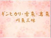 """ギンヒカリ・雪魚・岩魚""""川魚三昧"""