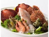 厳選された新鮮な魚介(イタリアン一例)