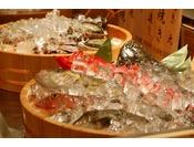 地魚チョイス
