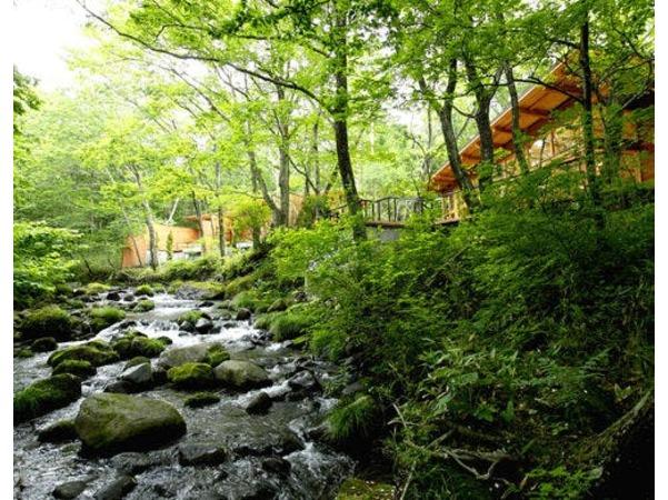 蔵王国定公園内の森に佇む森林温泉リゾート