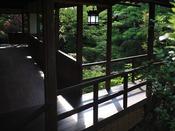 良質の「栂」を使った渡り廊下。 奥へ奥へと導かれて行くような風流な空間