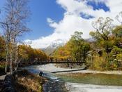 秋の行楽シーズン~黄金色に輝く上高地は、沢山のお客様が訪れます。高い山々の上には雪が訪れることも。そんな日は最高にフォトジェニックな一日。
