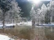 田代湿原の霧氷~11月は写真家に人気!!冷えた体はルミエスタホテルの温泉で温めましょう。