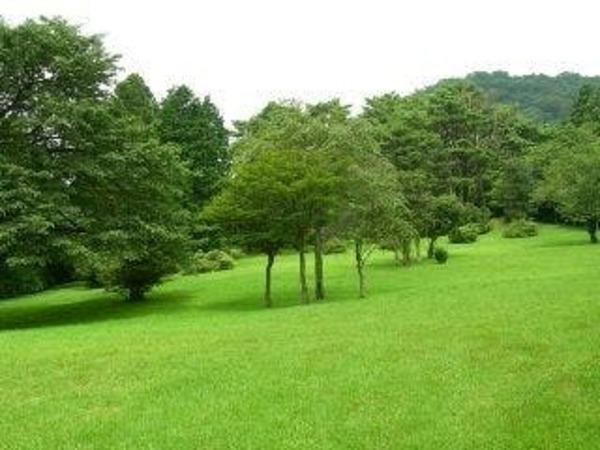 心やすらぐ樹木と、開放感あふれる緑の公園