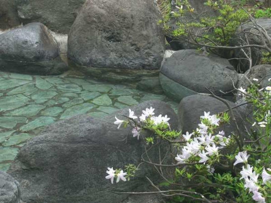 【春】露天風呂に咲く花
