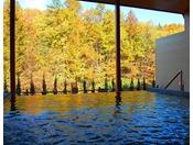 【秋・展望露天風呂】紅葉を愛でながら源泉掛け流しの温泉をお愉しみください