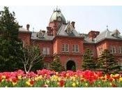 北海道庁旧本庁舎(赤レンガ)ホテルより徒歩5分