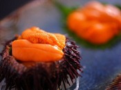 天然の赤ウニの甘みは「一度食べたら忘れられない味」