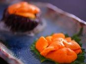 間人で獲れた「幻の赤ウニ」は口の中で甘みが広がり一度食べたら忘れられない味