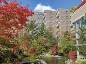【外観 秋】ホテル内中庭に生える紅葉に色づいた樹木