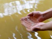 【鬼押温泉】効能 神経痛、筋肉痛、慢性消化器病、やけど、疲労回復など。