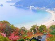 当ホテル敷地内の河津桜と外浦海岸