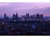 ホテルから望む新宿方面夕景