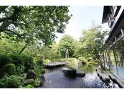 ロビーの目の前に広がる日本庭園。温かい自然光と美しい水面。池にはたくさんの鯉がいます。