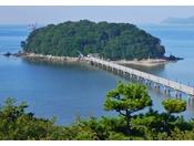 長さ387メートルの橋で陸地と結ばれて、国の天然記念物に指定されている蒲郡のシンボル《竹島》。島の中央部には、日本七弁財天のひとつである【八百富神社】があります。